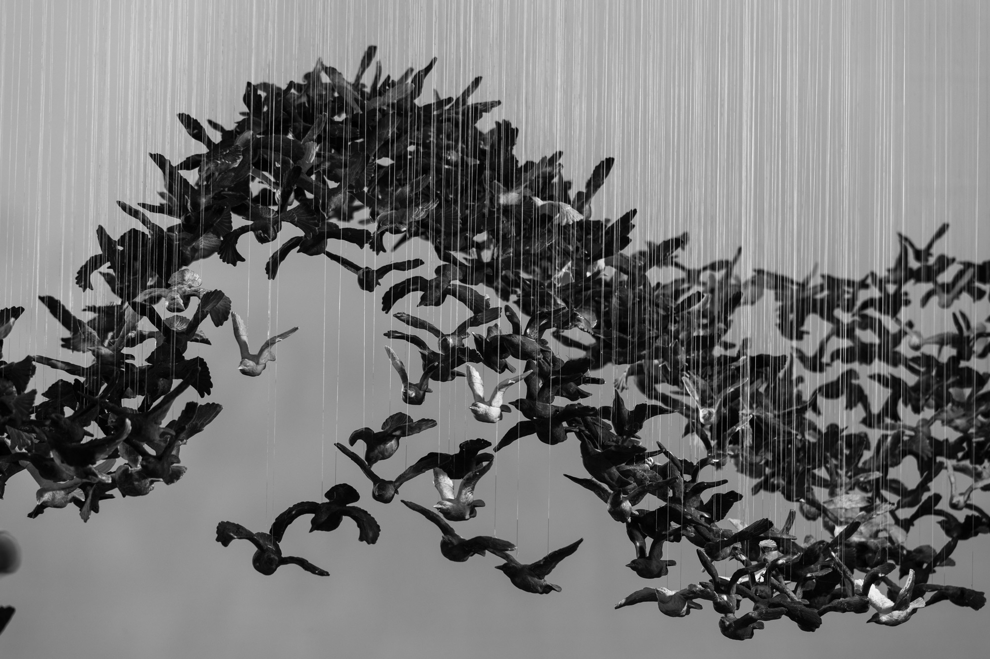 10,000 Porcelain Birds Create a Calligraphic Landscape at the National Gallery of Victoria