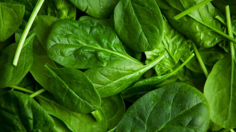 Dole baby spinach voluntarily recalled for salmonella risk