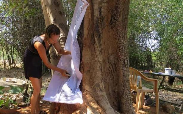 This artist from Auroville makes tree bark prints